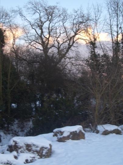 Snow at Dalton, James Burroughs
